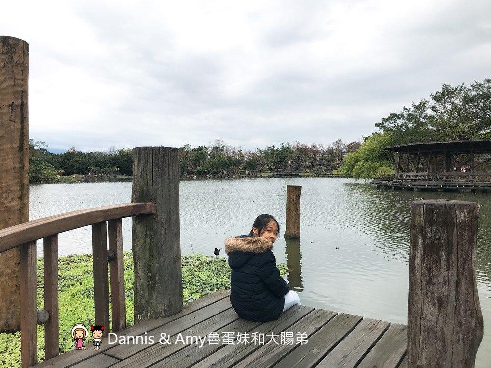 《宜蘭免費景點推薦》羅東運動公園。親近大自然親子旅遊好去處。冬天的落羽松好美啊!︱(影片)